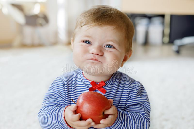 Little adorable baby girl eating big red apple. Vitamin and healthy food for small children. Portrait of beautiful child stock photography
