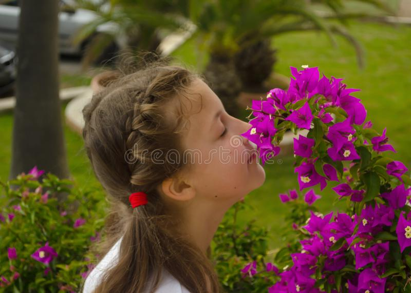 Little adorable girl smelling colorful flowers at summer day stock photo