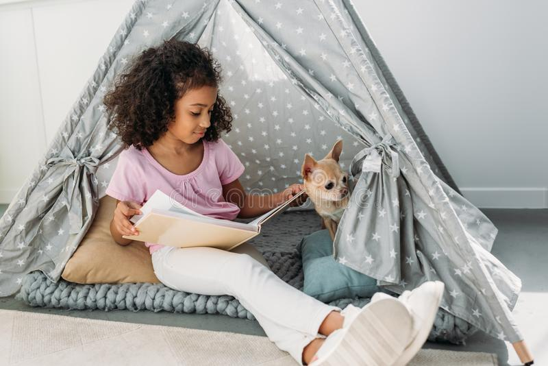little african american kid reading book with chihuahua dog near by in teepee stock photo