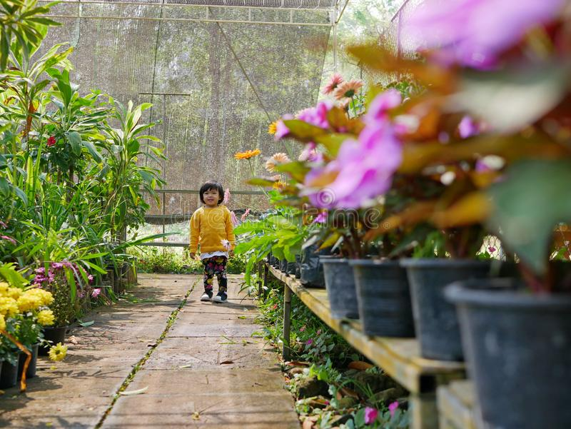 Little Asian baby girl enjoys walking in a flora garden - engaging with nature provides positive impact. Little Asian baby girl, 24 months old, enjoys walking in stock images