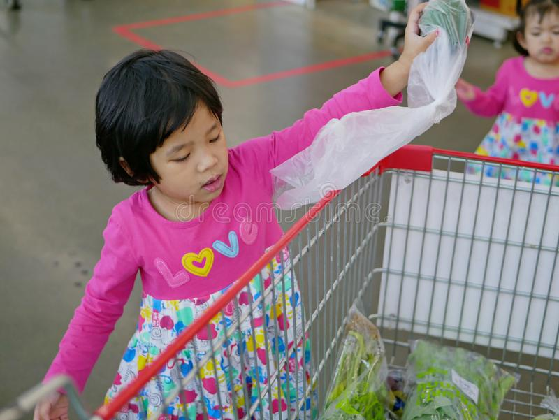 Little Asian baby girl help carrying and putting vegetables in plastic bag into a shopping cart at a supermarket royalty free stock photography