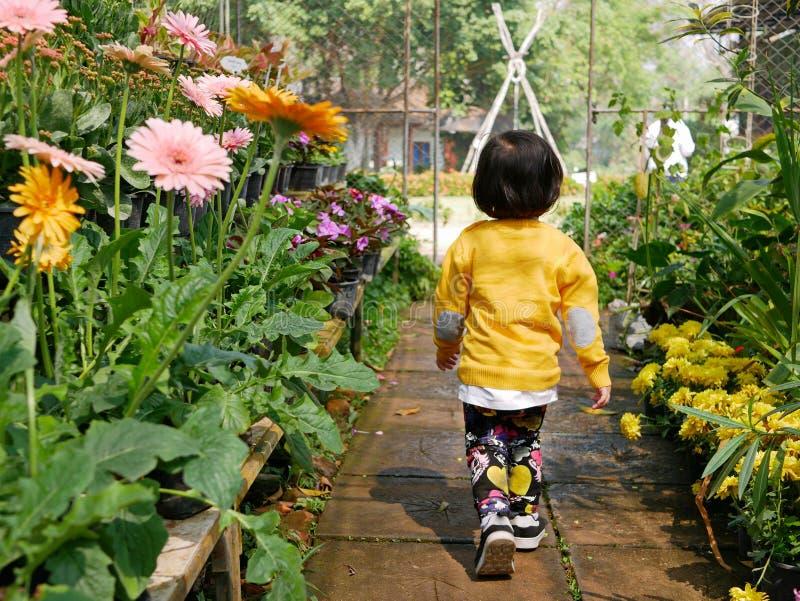 Little Asian baby girl enjoys walking in a flora garden. Little Asian baby girl, 24 months old, enjoys walking in a flora garden - engaging with nature provides stock photos