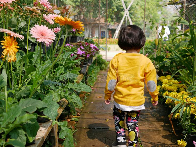 Little Asian baby girl enjoys walking in a flora garden. Little Asian baby girl, 24 months old, enjoys walking in a flora garden - engaging with nature provides royalty free stock image