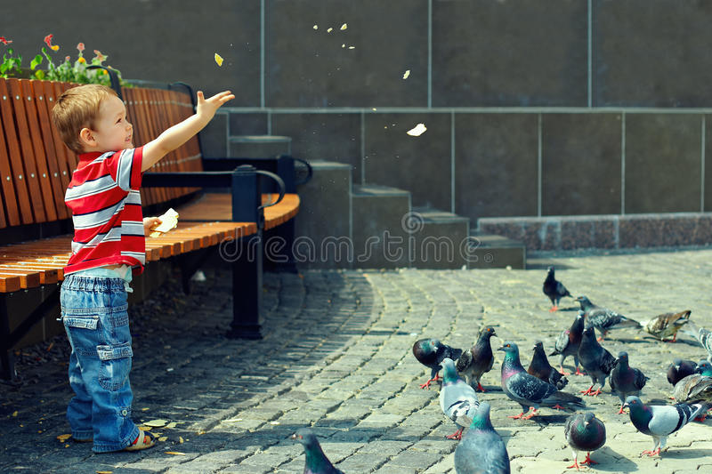 Little baby boy feeding birds in town square royalty free stock photography