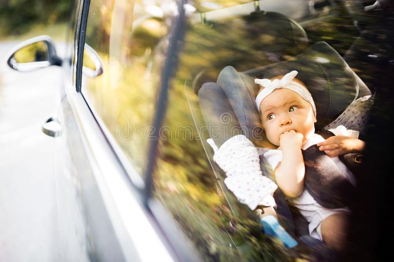Little baby fastened with security belt in safety car seat. stock photography