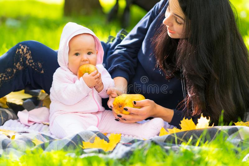 Little baby girl biting a ripe golden apple. Little baby girl biting a ripe golden apple as she sits with her mother on a rug on the grass in an autumn park royalty free stock photo