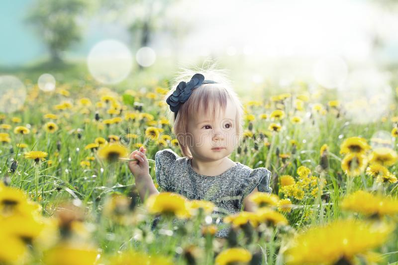 Little baby girl playing outdoors in spring flowers meadow royalty free stock photography