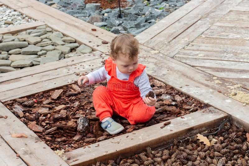 Little baby girl in a red suit studies natural materials bumps, bark, stones, pine cones. Caucasian child sits on the ground stock photos