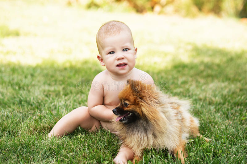 Little baby playing with dog Pomeranian spitz on the green grass. Outdoors. Kid and puppy royalty free stock image