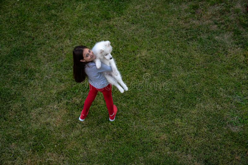 Little beautiful cute girl in casual clothes holding white samoyed puppy in hands, green grass around, summer time. Holidays stock images