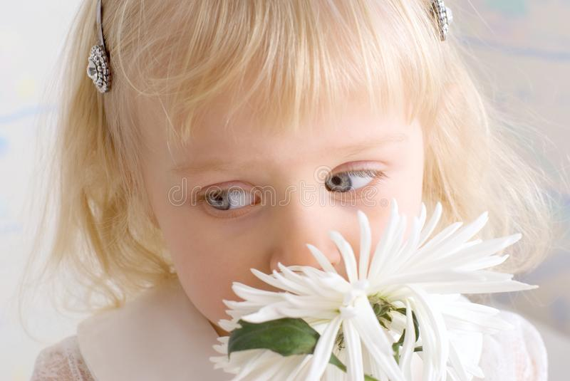 Download Little beautiful girl stock image. Image of look, blue - 8600257
