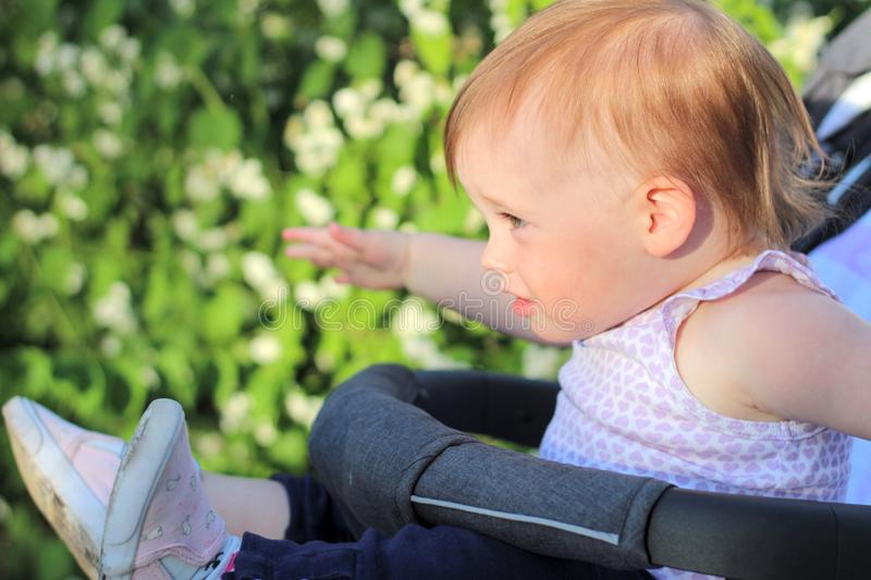 little, beautiful, smiling, cute redhead baby in a sleeveless shirt in a pram out-of-doors raises his hands up and looking forward stock photo
