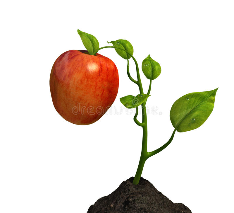Little big apple. Very high resolution 3D rendering of a small plant with an apple over white stock illustration
