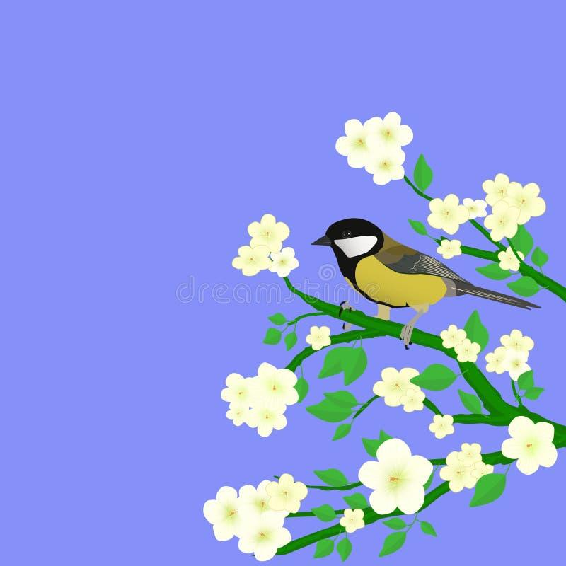 Download Little bird stock vector. Image of watching, nature, flowering - 23471836