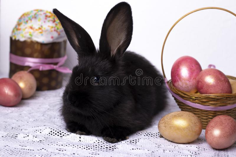 Little black rabbit in the Easter composition with eggs and Easter cakes, the concept of a spring church holiday, horizontal photo. Close-up royalty free stock images
