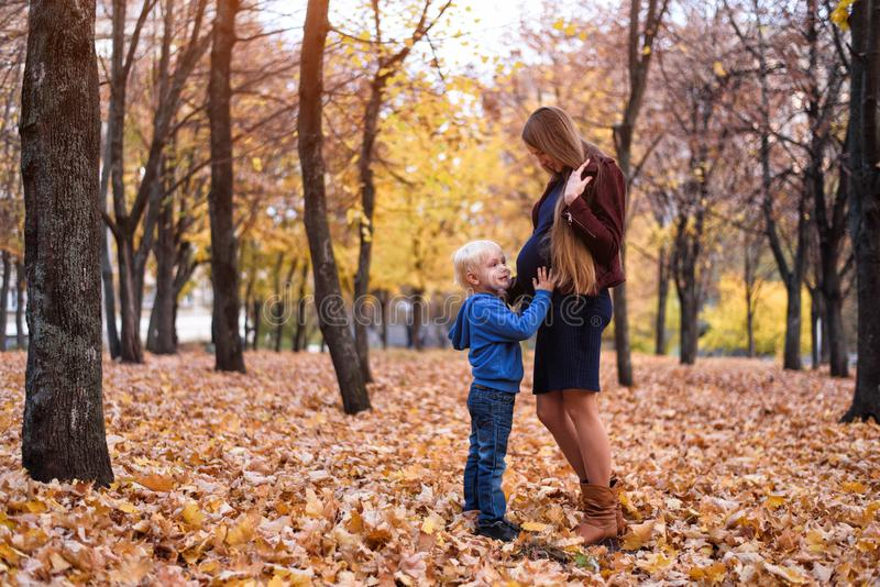 Little blond boy hugs his pregnant mom`s belly. Autumn park on the background stock image