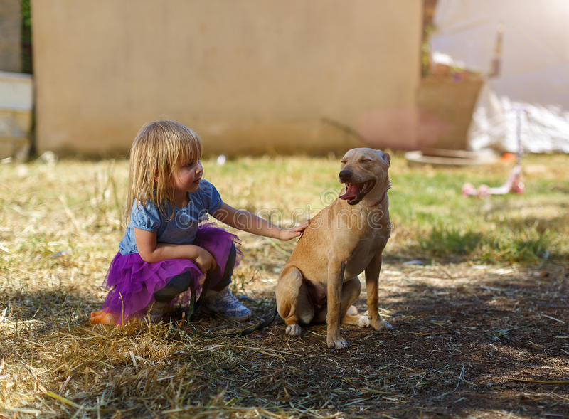 Little blond girl with her retriever dog royalty free stock photography