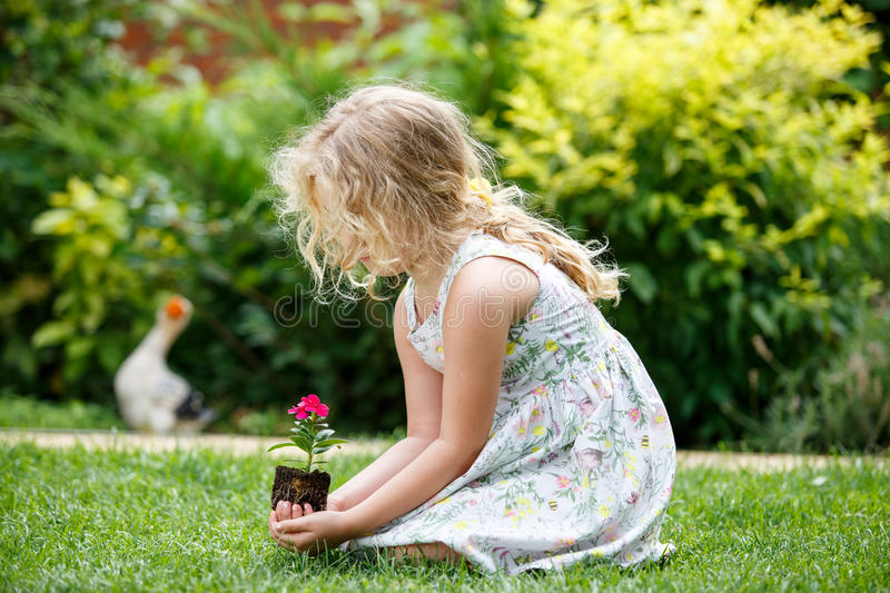 Little blonde girl holding young flower plant in hands on green background. stock photo