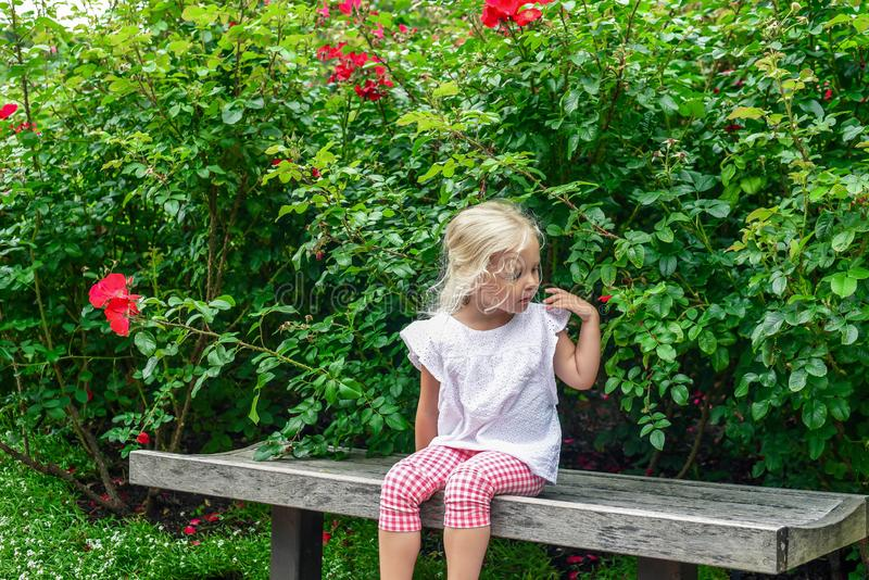 Little blonde girl sitting on a bench in the garden stock images