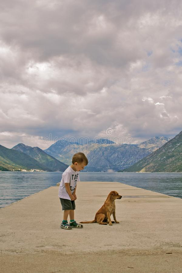 Little blondy boy is happy to meet with a puppy. A little boy met a puppy on the pier. The kid rejoices at this meeting, looks interested at the dog. Montenegro royalty free stock images