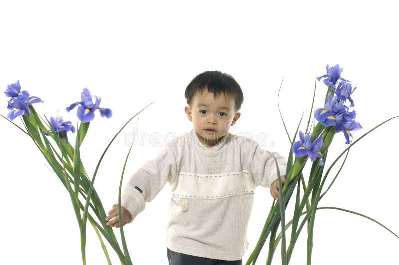Little Boy fotografía de archivo