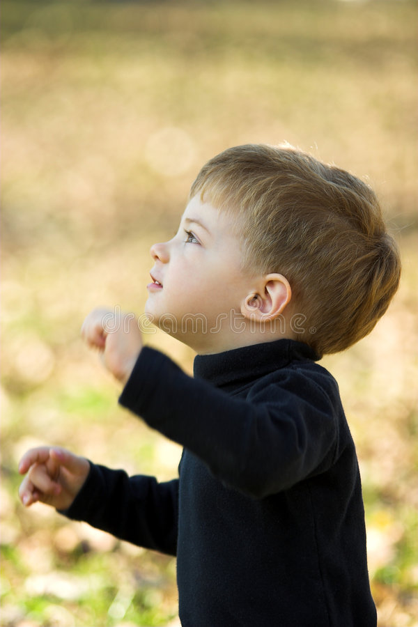 Download A little boy stock photo. Image of little, pretty, leisure - 1713948