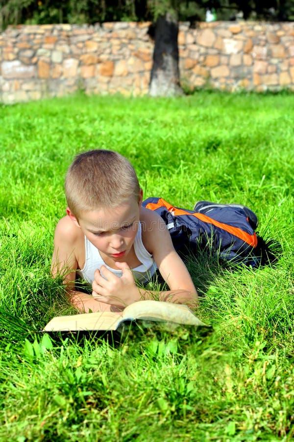 Little Boy affiche le livre images stock
