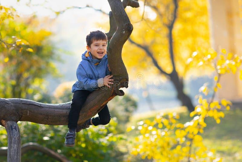 Little Boy auf einem Baumast Babyaufstiege ein Baum stockbilder