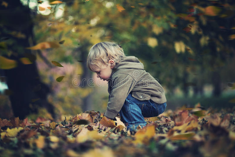 Download Little Boy And Autumn Leaves Stock Image - Image: 27373541