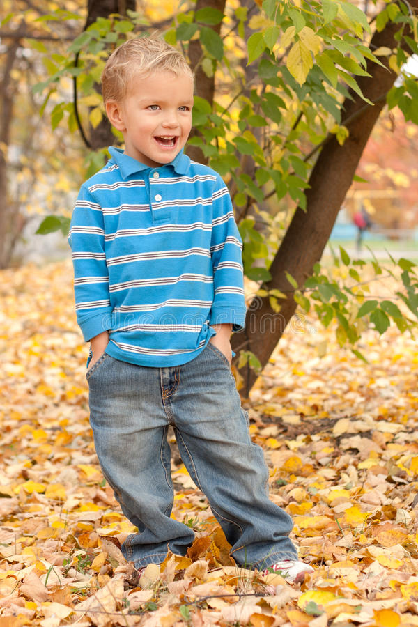 Little boy in autumn park. royalty free stock images