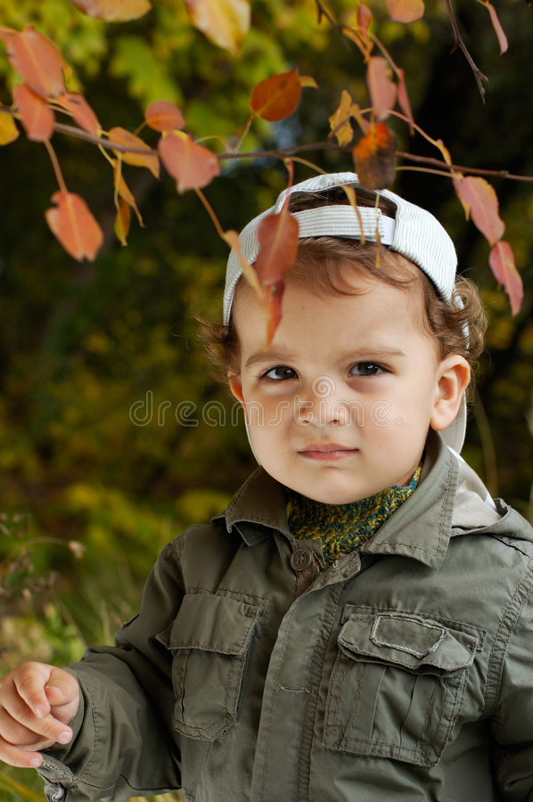 A little boy in an autumn park royalty free stock photography