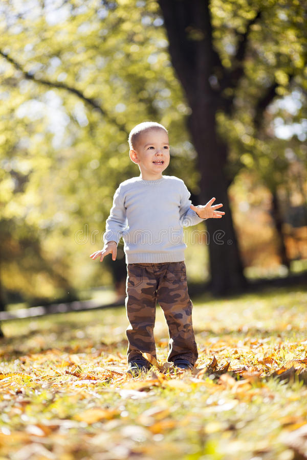 Little boy at the autumn park stock photos