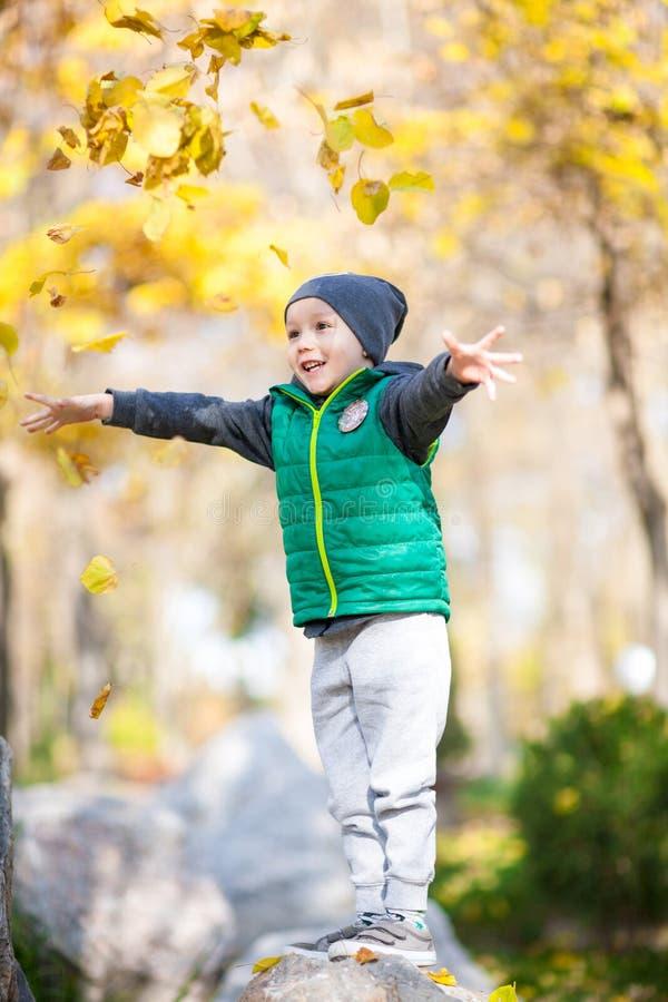 Little boy in the autumn park stock photos