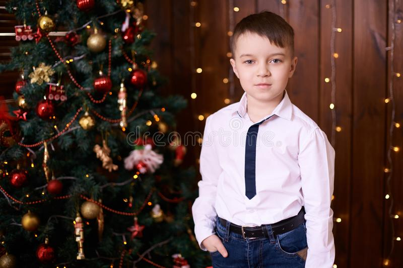 Little boy. Beautiful portrait. Christmas interior. Brown background royalty free stock images