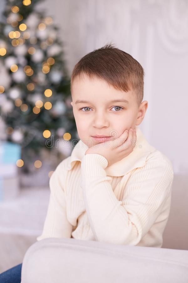 Little boy. Beautiful portrait. Christmas interior. Vertically royalty free stock photo
