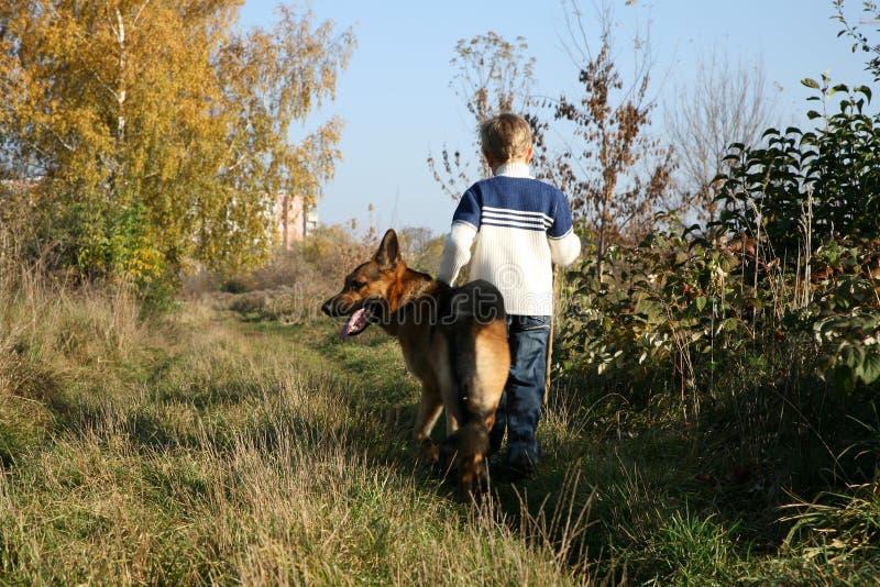 Little Boy And Big Dog (German Shepherd ) Royalty Free Stock Photo
