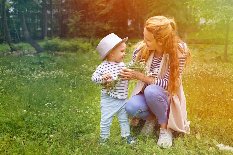 Little boy in a big hat gives his beloved mother a bouquet of wildflowers chamomiles. Mom accepts a gift from her little son in a big hat with love and royalty free stock images