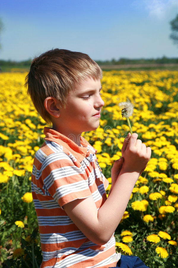 Download Little Boy Is Blowing Dandelion. Stock Photo - Image: 9209196