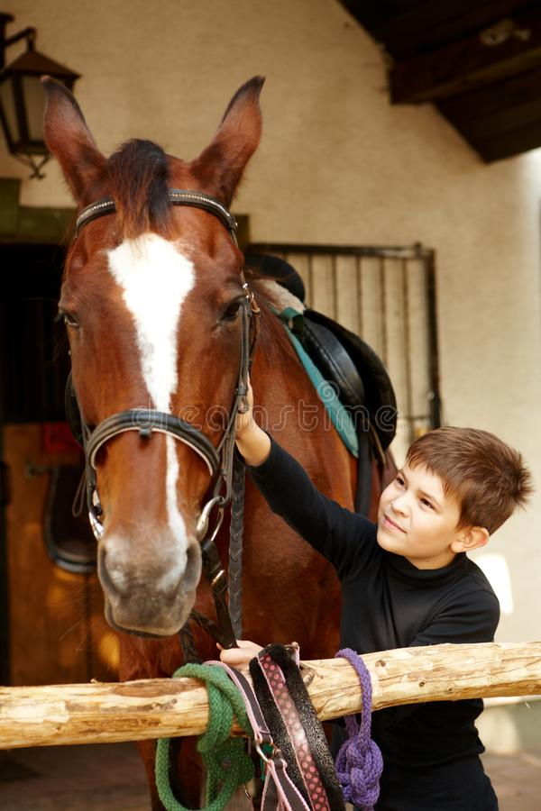 Little boy caressing horse. Cute little boy caressing horse stock image