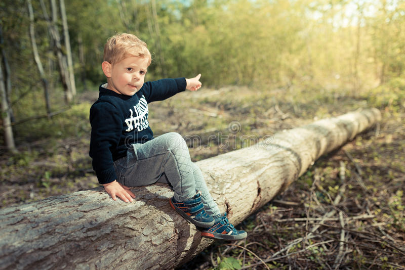 Little boy child sitting on a tree pointing at the sun of future royalty free stock image