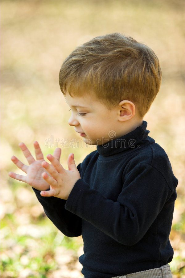 Download A little boy clapping stock photo. Image of autumn, little - 1713980