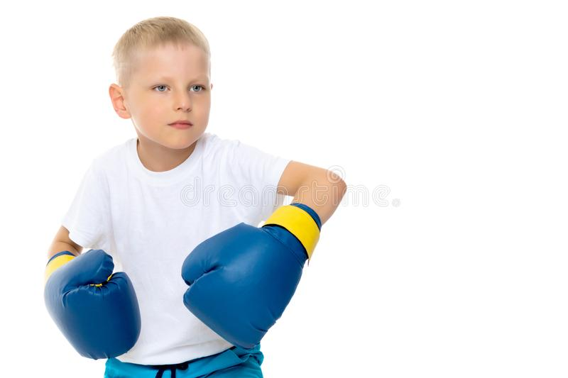 A little boy in a clean white T-shirt and boxing gloves. royalty free stock photos