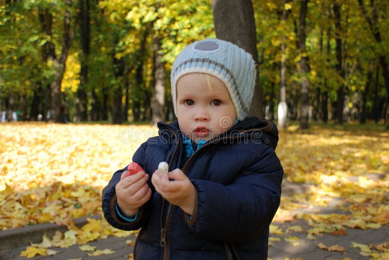 Little boy with crayons. Little boy holds crayons and looks at camera stock photography