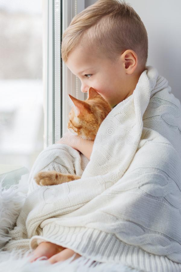 Little boy with cute cat at home. Embracing looking out of the window royalty free stock photos