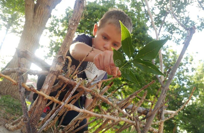 Little Boy, das ein feenhaftes Haus baut lizenzfreie stockfotografie