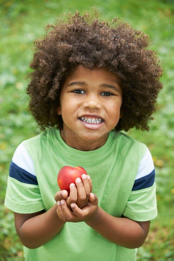 Little Boy die Nectarine in openlucht eten royalty-vrije stock afbeelding