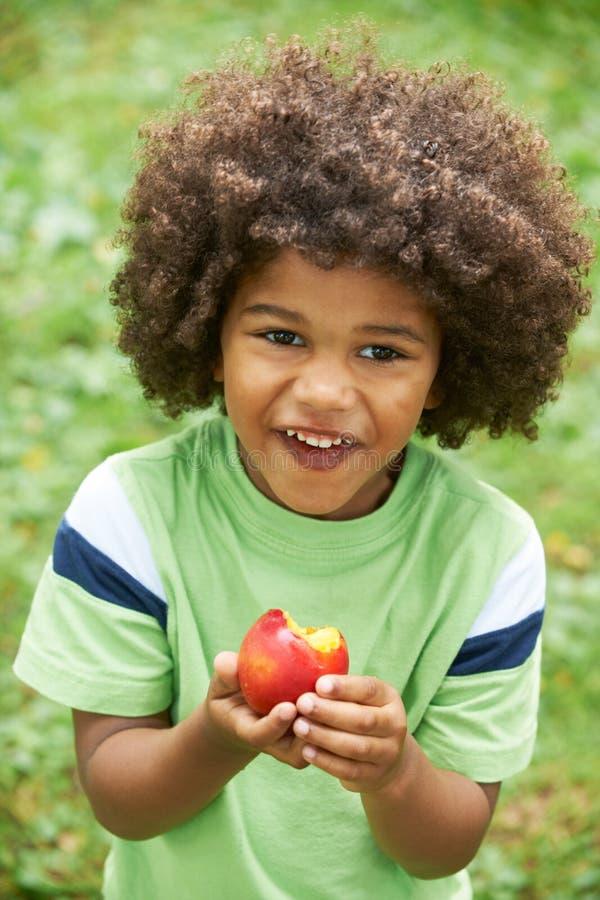 Little Boy die Nectarine in openlucht eten stock foto