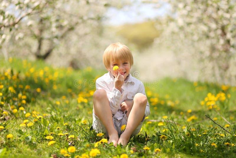 Little Boy doux tenant la fleur dans le verger photos stock
