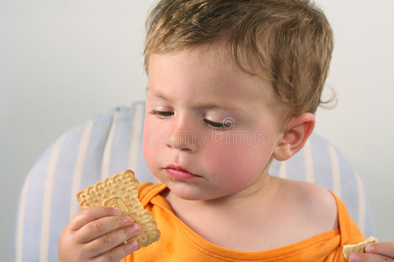 Little boy eating  biscuit