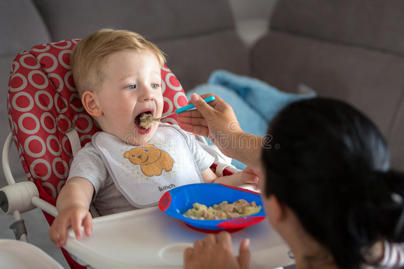 Download Little boy eating lunch stock image. Image of dining - 93409255